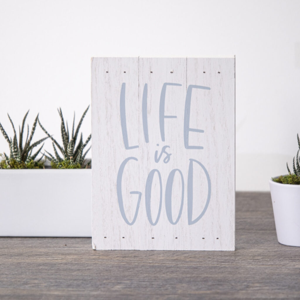Life is Good - Secret Elf Gift
